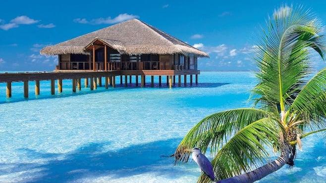 Holidays to maldives 2018 2019 thomson now tui maldives holidays sciox Gallery