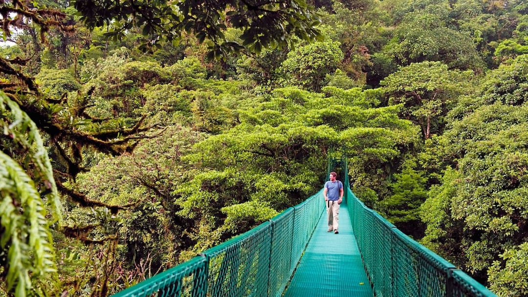 man crossing bridge at Monteverde Cloud Forest