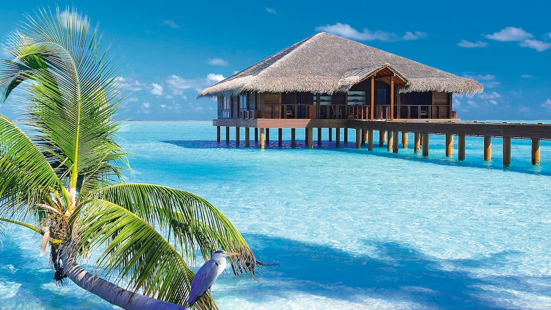 Best Hotels In The Maldives I Tui