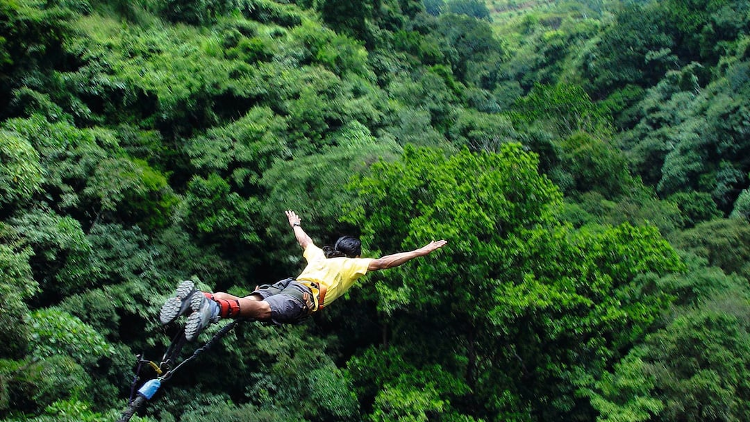 Bungee jumping over jungle
