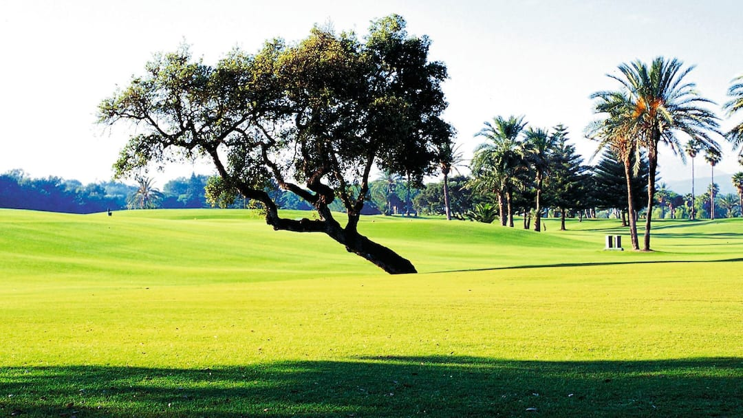 Golf course, Costa Del Sol