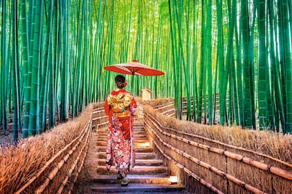 Lady in kimono walking through bamboo garden