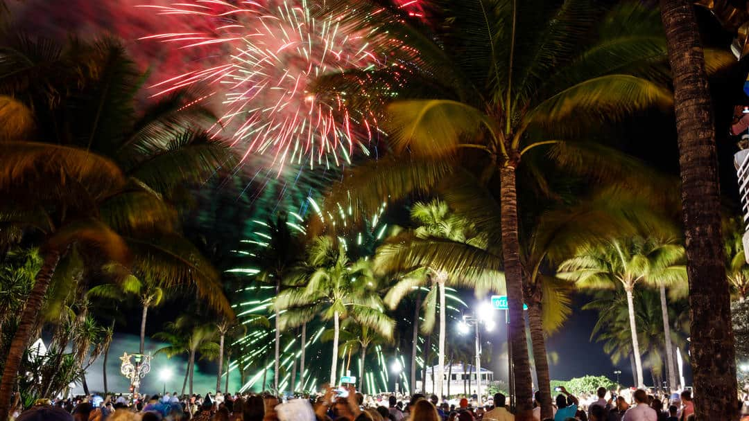 fireworks and palm trees