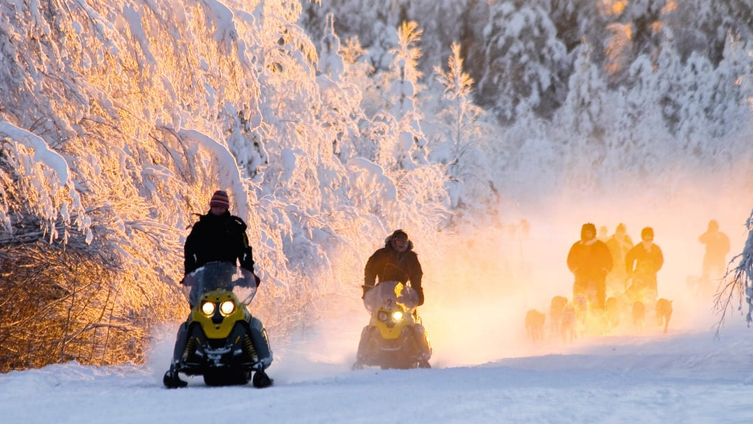 Snowmobile through Lapland