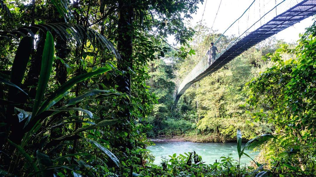 Hanging bridges in Costa Rica